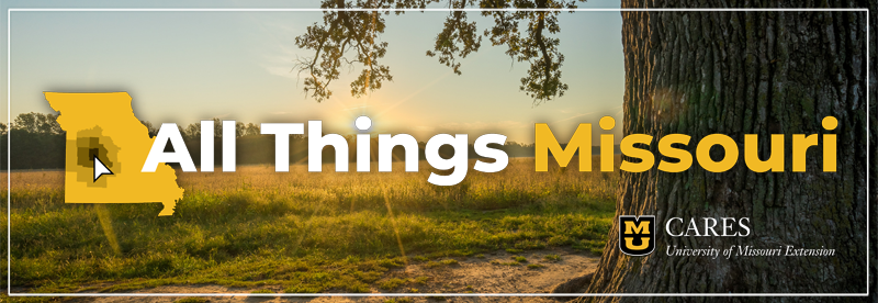 all things missouri banner