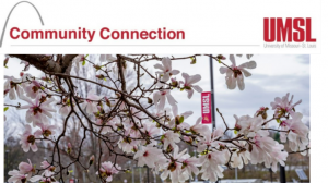 Commmunity Connect Newsletter