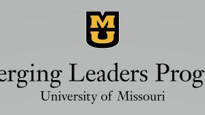 Emerging Leaders Program
